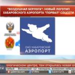 こんな宣伝方法もあり?ハバロフスク空港の「空飛ぶクマ」ロゴ